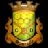 Clube Desportivo de Montijo
